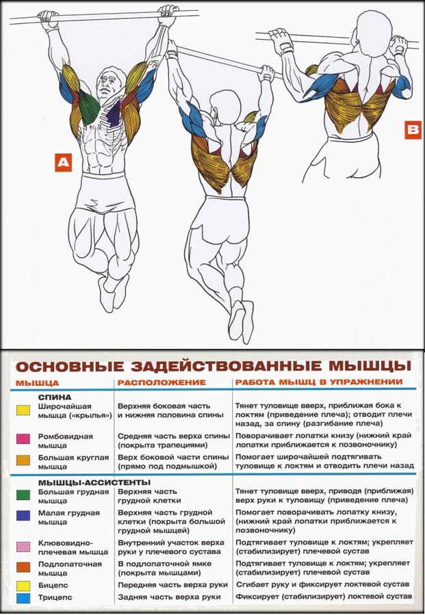 20101226150157.jpg